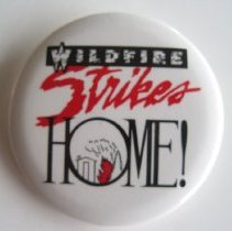 Image of Wildfire Strikes Home Pin - Pin, Lapel