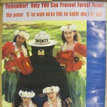 Image of Remember! Only You Can Prevent Forest Fires - Poster
