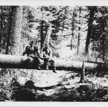 Image of Boy Scouts Larry Garrison and Jimmy Jones of Troop 116 Livingston, MT - 2004.075.460a