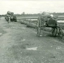 Image of Vietnam is a land of contrast - axe squared log on the ox cart - 2004.078.116.043