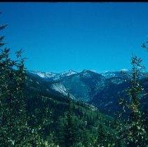 Image of Powell Ranger District Near Elk Summit - 2005.174.086