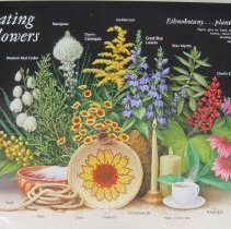Image of Celebrating Wildflowers    - Poster