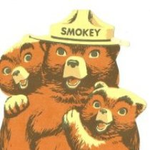 Image of Remember Only You Can Prevent Forest Fires!  - Bookmark
