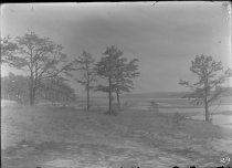 Image of 0029 - Negative, Glass Plate