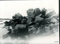 Image of 0185a - Negative, Glass Plate