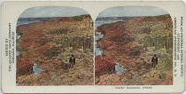 Image of 3057 - Stereograph
