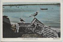 Image of Carr.0941 - Postcard