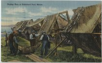 Image of Carr.0964 - Postcard