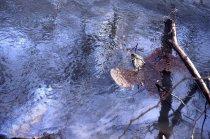 Image of 2011.018.028.q