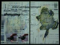 Image of 2008.037.003q - Hall, Lane and Lisa Moline