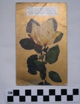Image of 2007.17.3 - Postcard
