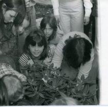 Image of Arbor Day - 1979