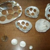 Image of Mussel Shells and buttons