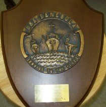 Image of Award Shield