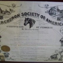 Image of Certificate of Pedigree