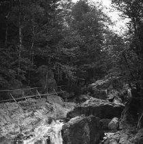 Image of At top of Glen Ellis Falls, N.H. - 09/08/1936