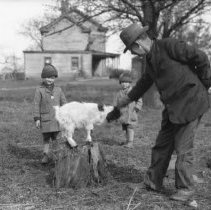 Image of Harold's goat with Dad, George, & Alan - 04/29/1928