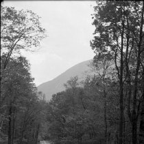 Image of Road Scene in Crawford Notch 616 244