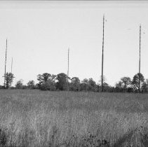 Image of Radio Towers 616 88