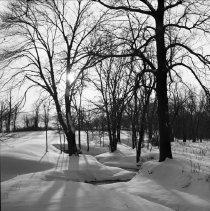 Image of Snow shadows - 01/14/1939