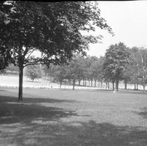 Image of War Veterans Cemetery 140