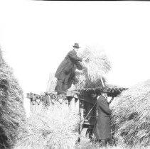 Image of Baling hay - 10/9/1921