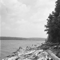 Image of Lake Wallenpaupack - north of the Zimmermann's property - 06/25/1936