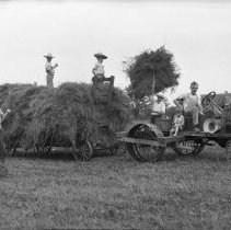 Image of Gathering hay on Harold's Farm - 08/17/1932