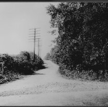 Image of Hall-Mills Murders: DeRussey's Lane (a.k.a. Franklin Boulevard), Somerset, NJ (1922) -