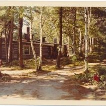 Image of Log Cabin in Forest