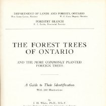 Image of Forest Trees of ON 1925 - Inside