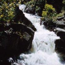 Image of Rapids Above Lumber Camp