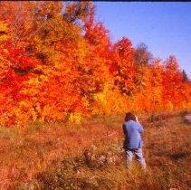 Image of 09/28/1975 - Fall Scenery, September 1975