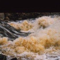 Image of Algonquin Park Water
