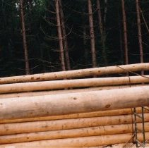 Image of July 1998 - ALM Construction