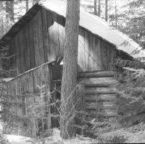 Image of 1985 - Dahlia outbuilding