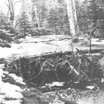 """Image of 51 - """"Showing the Beaver Dams one above the other going into the Ravine""""."""