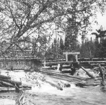 Image of 63 - A member the Hayes Party fishing beside a logging dam.