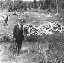 Image of 248 - J.W. Millar at Cache Lake feeding deer.