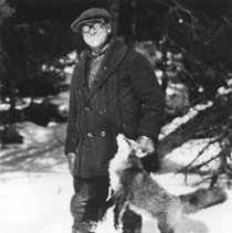 Image of 250 - J.P. Gervais and a red fox found frozen.
