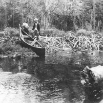 Image of 252 - Pulling a canoe over a beaver dam on Cranberry Creek.