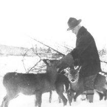 Image of 287 - Winter 27-28 - Algonquin Park, Ontario, J.W. Millar.