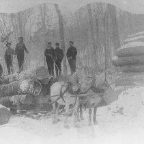 Image of 297 - John Galbraith camp, Birch Lake, Livingston Township.