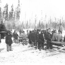 Image of 305 - Men posing with cross cut saws in the bush.