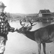 Image of 417 - Superintendent J.W. Millar and one of the tame deer in front of Algonquin Park Station, Cache Lake.