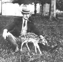 Image of Superintendent J.W. Millar with deer fawn from Cache Lake herd.