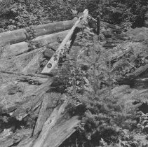Image of 1959 - Corner of old stable at MacKay farm on White Trout Lake