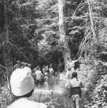 Image of 745 - Conducted Hike - Old Tanamakoon Trail. July, 1958, D. Ussher