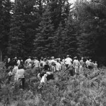 Image of 1963 - Conducted hike, Mew Lake, J.P. Prevett leader, 1963.