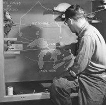 Image of 909 - Gary Cruickshank adds finishing touches to bird display - 1953.
